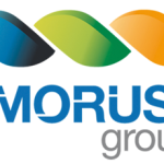 amoruso-group-logo-maint